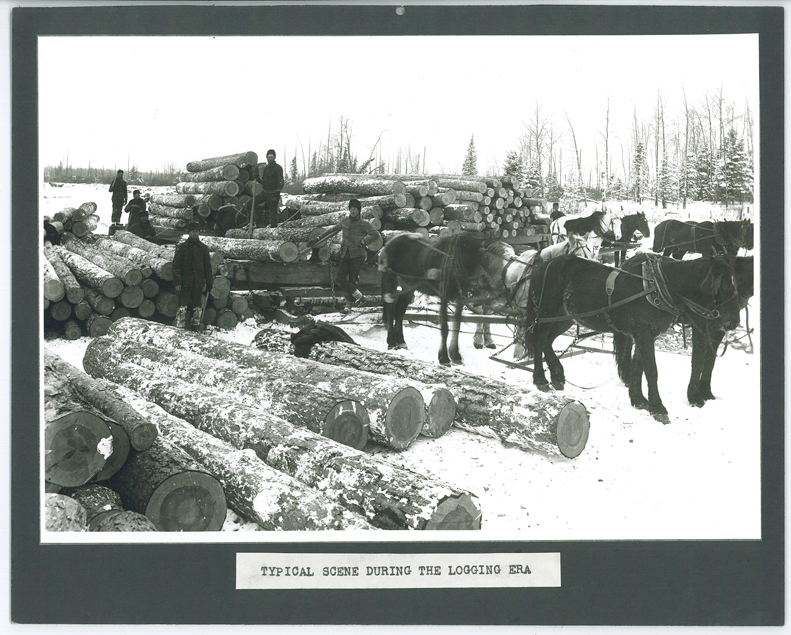 Logging scene, MCHS collections #0000.000.323.