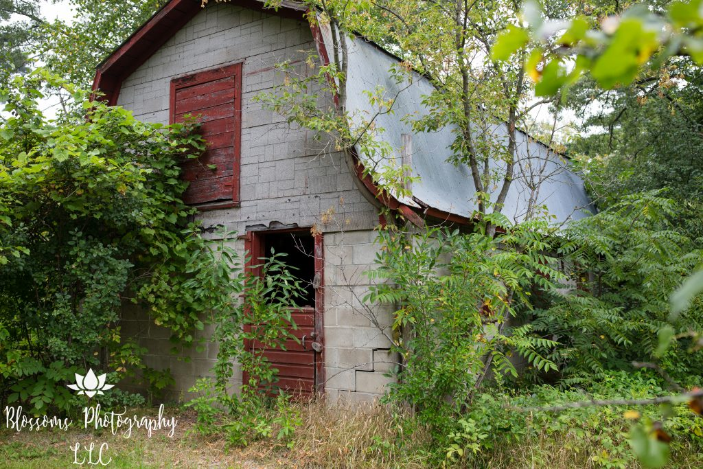 Barn at Smudas' Zoo property, 2019, photo courtesy Blossoms Photography, LLC.