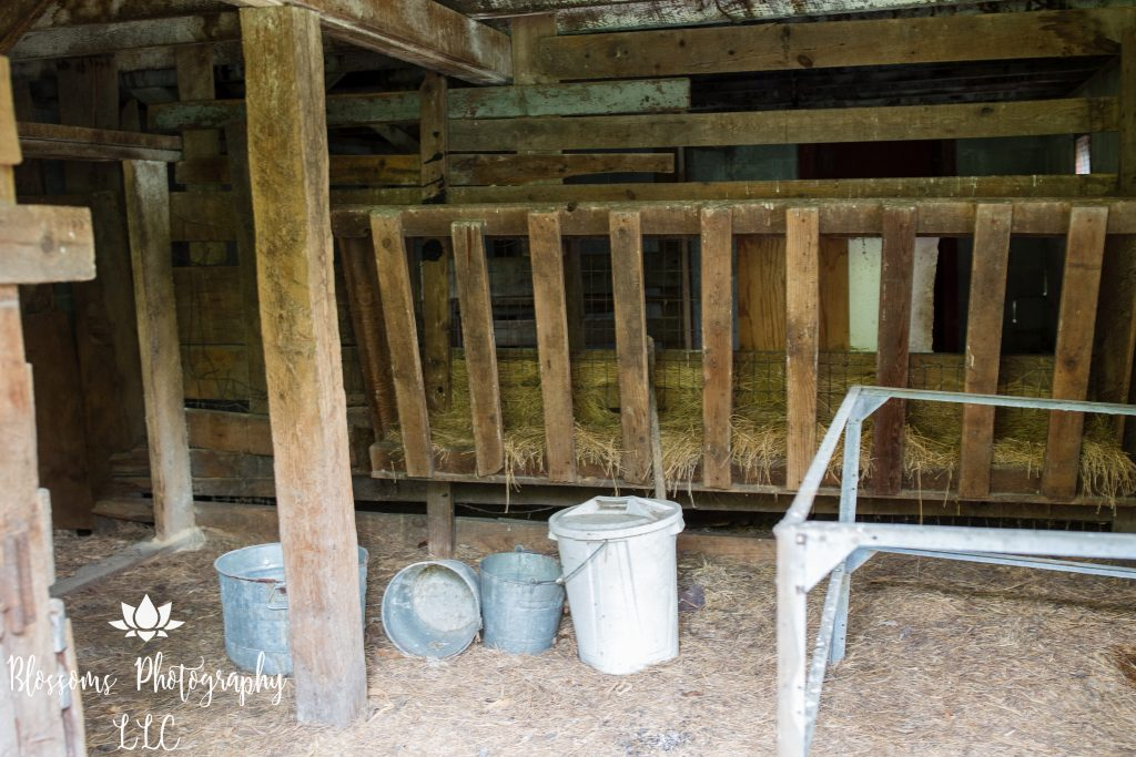 Animal pen in barn at Smudas' Zoo property, 2019, photo courtesy Blossoms Photography, LLC.