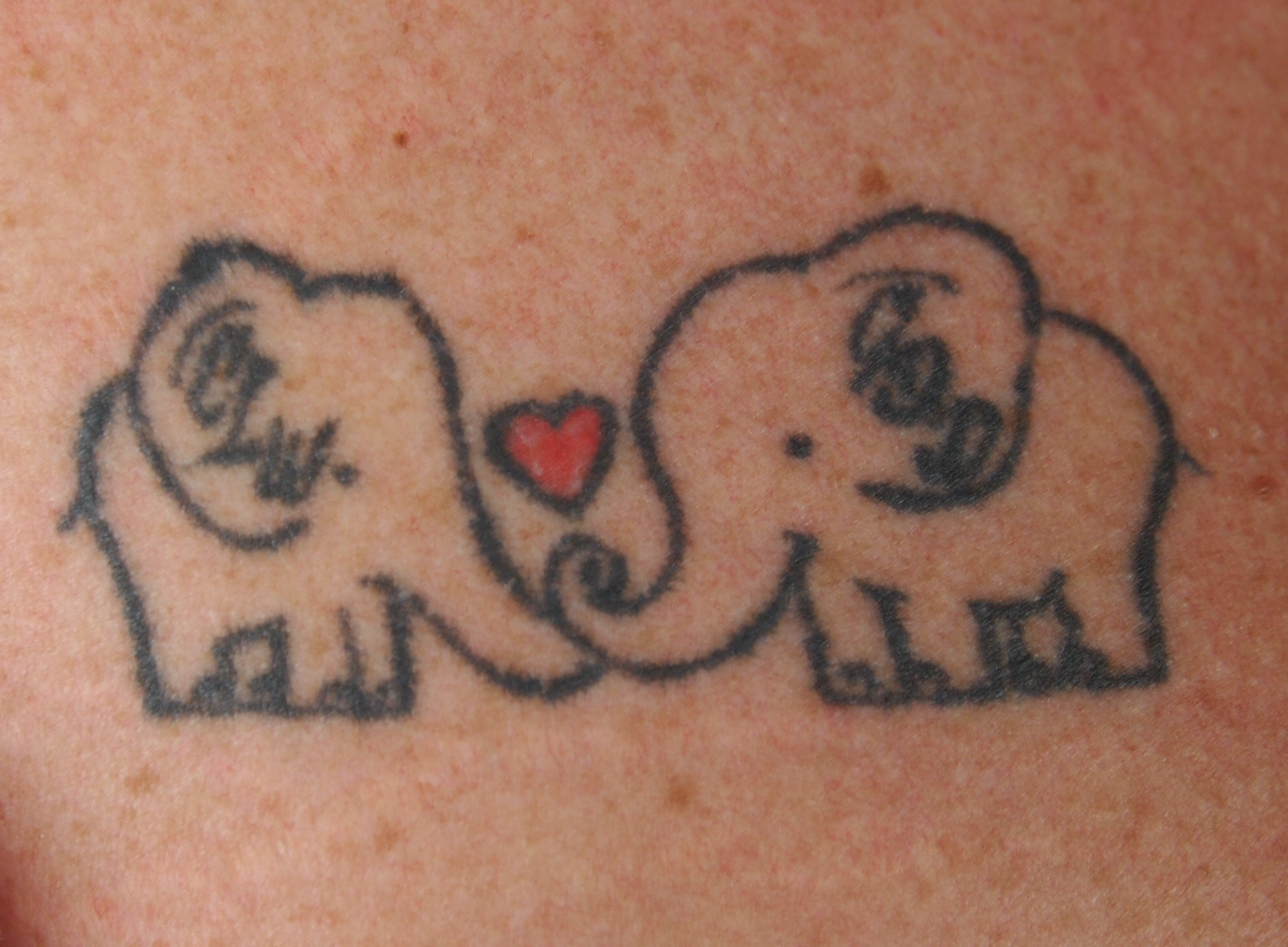 Tattoo on Crystal D. from The Story Behind the Tat: Tattoo Art in Central MN exhibit. Two elephants with a heart - a sister tattoo Crystal shares with her sister Grace. Tattoo by Jason Brigmon of Skyline Tattoo, Little Falls, MN 2015.