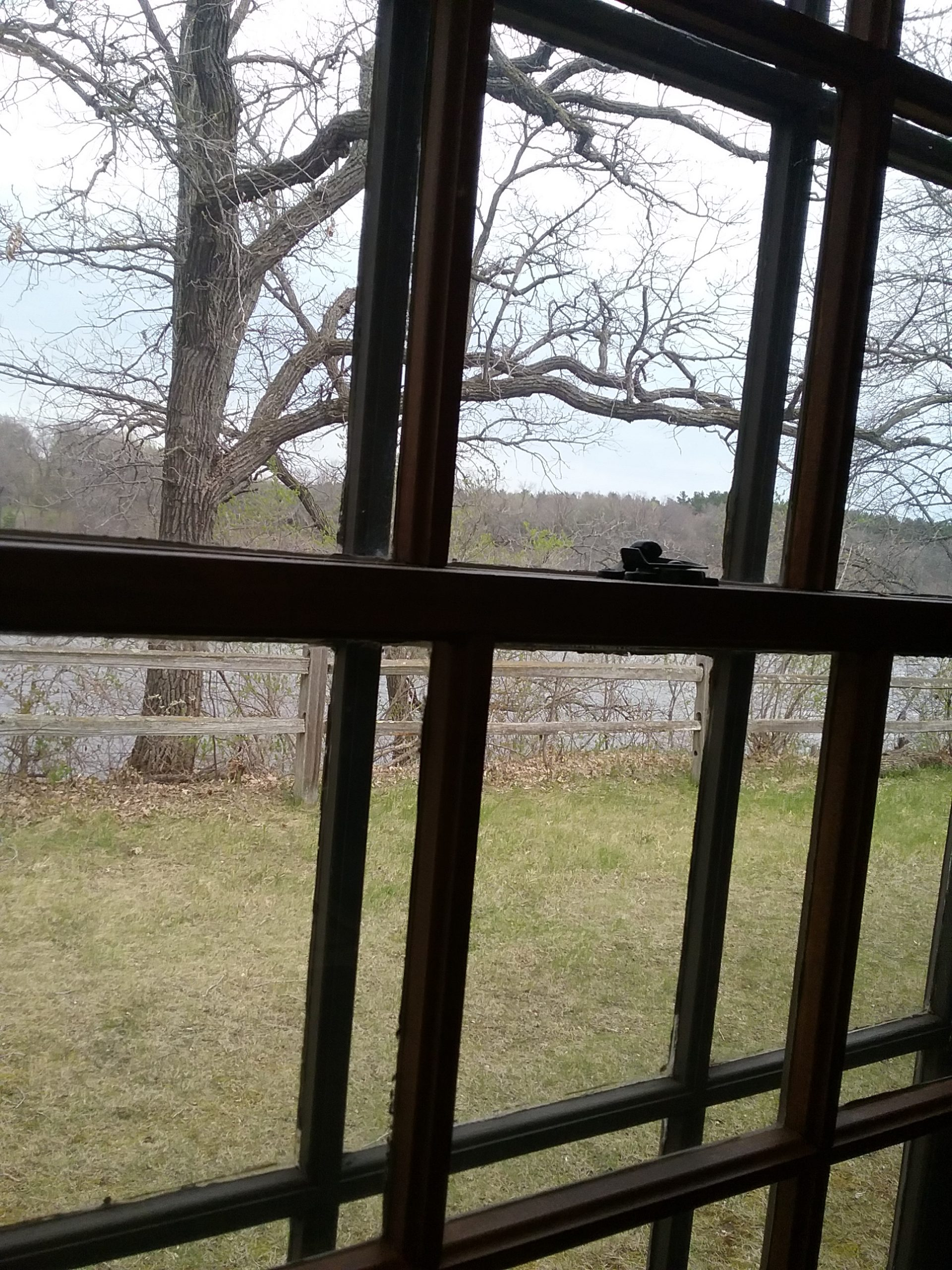 This shows the proximity of the fence through the museum's window. Taken May 11, 2019.