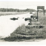 Road to Little Falls City Beach, 1972 Flood, Morrison County, Minnesota. Photo by Gene Dubois for the Little Falls Daily Transcript. From the Morrison County Historical Society collections.